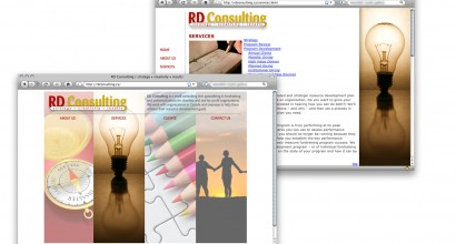 RD Consulting Website